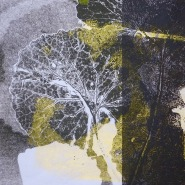 Amanda Hopkins, garlic mustard, monoprint 2017