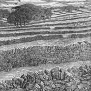Scullard 2 Drystone walls White Peak