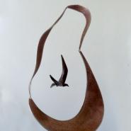 EMeynell-hanging bird