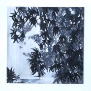004: Maple tree (oil on board mounted on wood), 60 x 60cm, £400