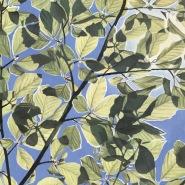 005: Spring sky (oil on linen board), 61 x 53cm, framed, £625