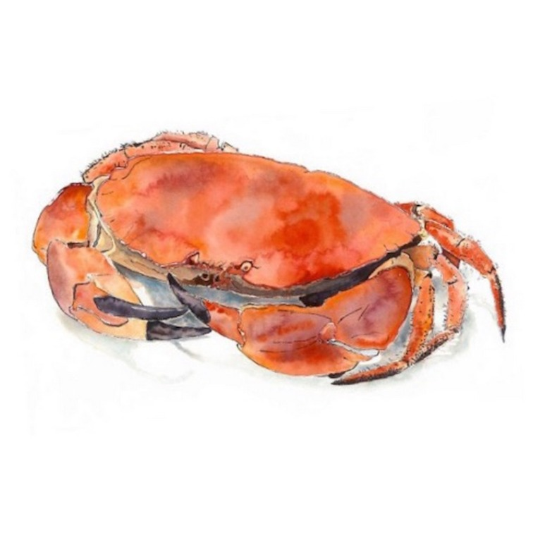 Lucy-Clayton-Crab-Kent-Painters-Art-Exhibition