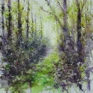 002: A woodland wander (watercolour), 53 x 53cm, unframed, £375