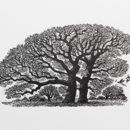 002: Two for joy (wood engraving), 80 x 45mm, £25