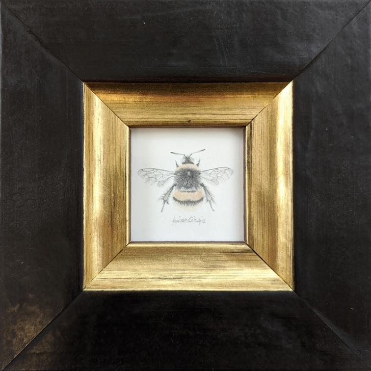 1. Louisa Crispin individual bumblebee kpg