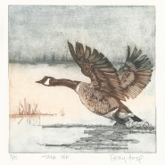 002 Take off, edition 5 of 15 (etching), 200 x 200mm, unframed, £135