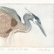 003: Keeper of the pond, edition 4 of 15 (etching), 170 x 140mm, unframed, £95